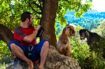 An intimate goat experience at the climbing wall in Geyikbeyiri.